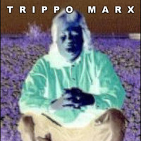 Trippo Marx - Songs for an Imaginary Audience (Explicit)