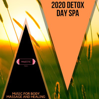 Various Artists - 2020 Detox Day Spa: Music for Body Massage and Healing