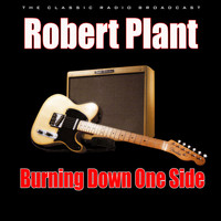 Robert Plant - Burning Down One Side (Live)