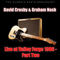 David Crosby - Live at Valley Forge 1986 - Part Two (Live)