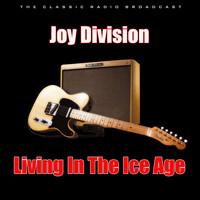 Joy Division - Living In The Ice Age (Live)