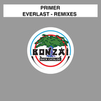 Primer - Everlast - Remixes
