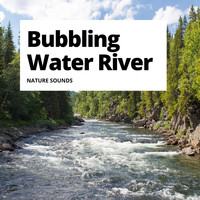 Nature Sounds - Bubbling Water River