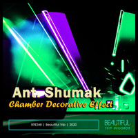 Ant. Shumak - Chamber Decorative Effect
