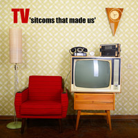 Various Artists - T.v. Sitcoms That Made Us