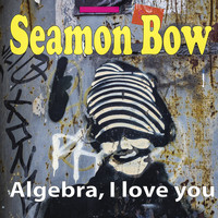 Seamon Bow / - Algebra, I Love You