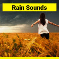 Nature - Cozy Rain Sounds