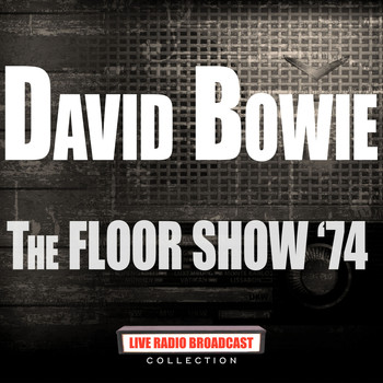David Bowie - The Floor Show '74 (Live)