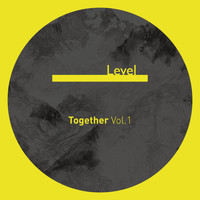 Various Artists / - Together, Vol.1