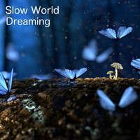 Slow World - Dreaming