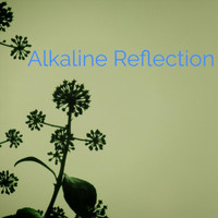 Alkaline - Reflection