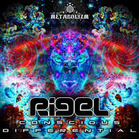Rigel - Conscious Differential