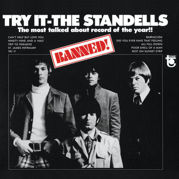 The Standells - Try It (Mono Version)