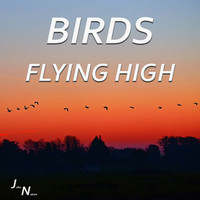 John Nature - Birds Flying High