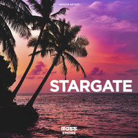 Various Artists - Stargate