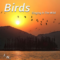 John Nature - Birds - Singing In The Wild
