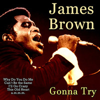 James Brown - Gonna Try