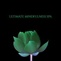 Mindfulness Meditation Music Spa Maestro - Ultimate Mindfulness Spa - Wellness and Reiki Healing, Massage Music, Sleep, Essential Oils Therapy
