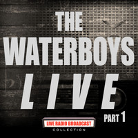 The Waterboys - The Waterboys Live Part 1 (Live)