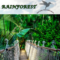 Klaus Back & Tini Beier - Rainforest (Nature Recordings)