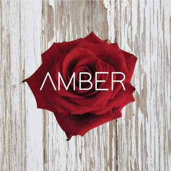Amber - Fantasies and Dreams