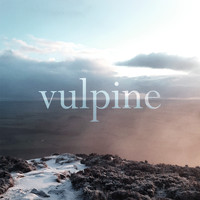 Vulpine - Days Like These
