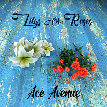 Ace Avenue - Lilys or Roses