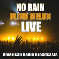 Blind Melon - No Rain (Live)