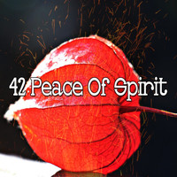 Classical Study Music - 42 Peace of Spirit