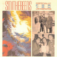 The Smithereens - Especially for You (Live Compilation)