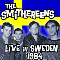 The Smithereens - Live in Sweden 1984