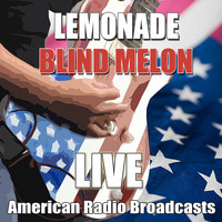 Blind Melon - Lemonade (Live)
