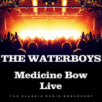 The Waterboys - Medicine Bow Live (Live)