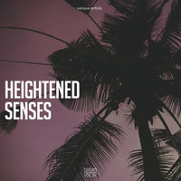 Various Artists - Heightened Senses
