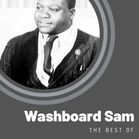 Washboard Sam - The Best of Washboard Sam