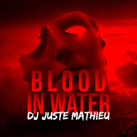 DJ JUSTE MATHIEU / - Blood in Water