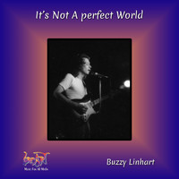 Buzzy Linhart - It's Not a Perfect World