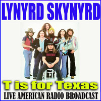 Lynyrd Skynyrd - T is For Texas (Live)