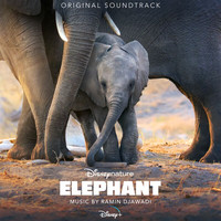 Ramin Djawadi - Elephant (Original Soundtrack)