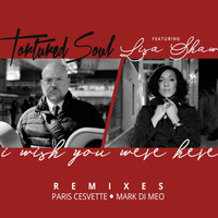 Tortured Soul - I Wish You Were Here (Remixes)