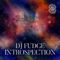 DJ Fudge - Introspection