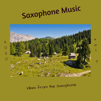 Saxophone Music - Vibes from the Saxophone, Vol. 7