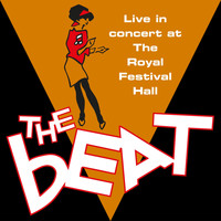 The Beat - Live in Concert at the Royal Festival Hall
