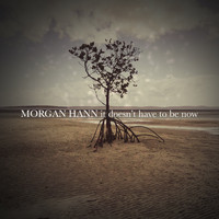 Morgan Hann / - It Doesn't Have To Be Now