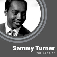 Sammy Turner - The Best of Sammy Turner