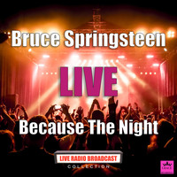 Bruce Springsteen - Because The Night (Live)