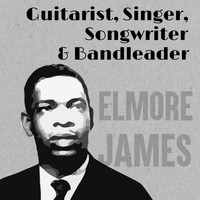 Elmore James - Guitarist, Singer, Songwriter & Bandleader