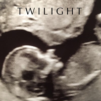 Twilight - Just Begun