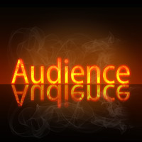 Audience - Beginnings