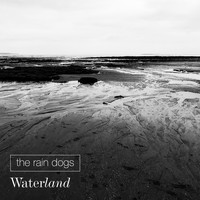 The Rain Dogs / - Waterland